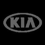 eurorevisioni-revisione-auto-kia-torino-150x150